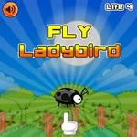 Fly LadyBird