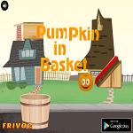 Pumpkin in Basket
